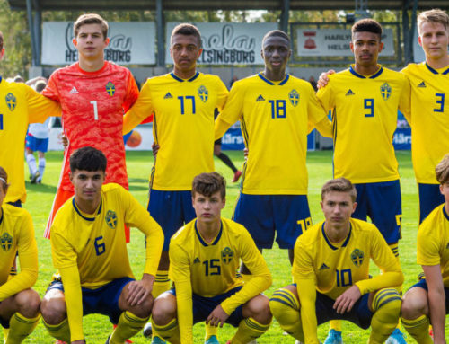 Sveriges grupp i U17 EM-kvalet